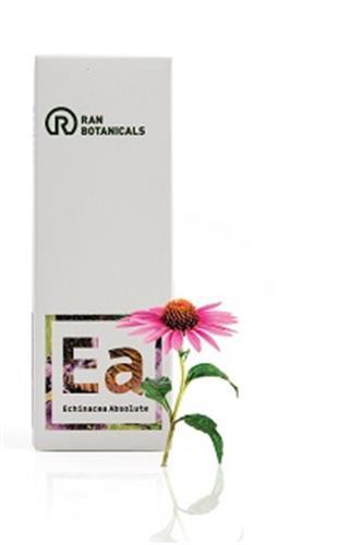 אכינצאה אבסולוט - Echinacea Absolute
