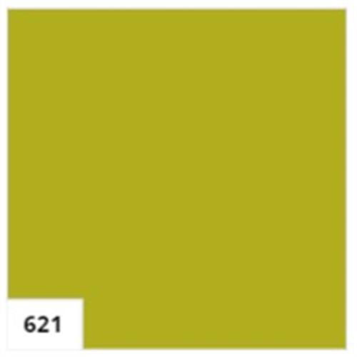 אמסטרדם אקר' 120 מל' - 621 OLIVE GREEN LIGHT