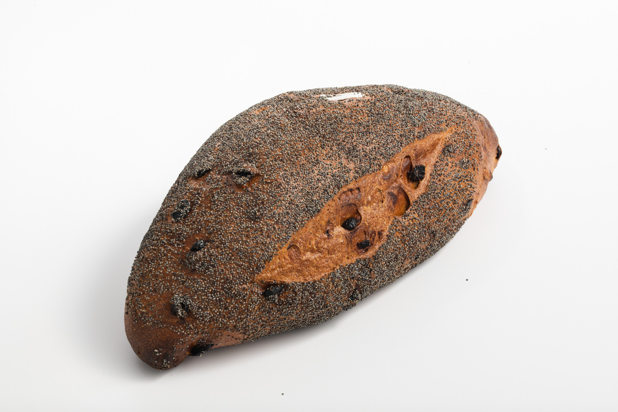 לחם שלם חמוציות