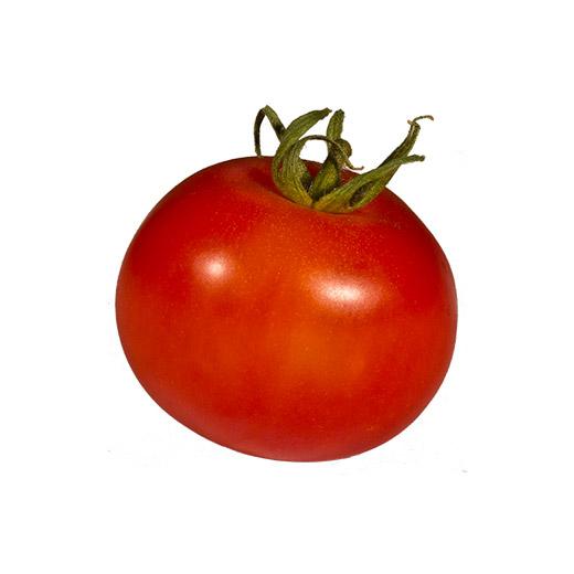 עגבניה משובחת אורגנית 1 קג
