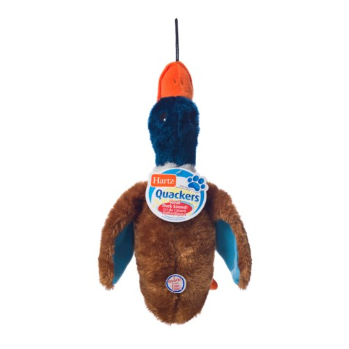 הרץ צעצוע ברווז גדול