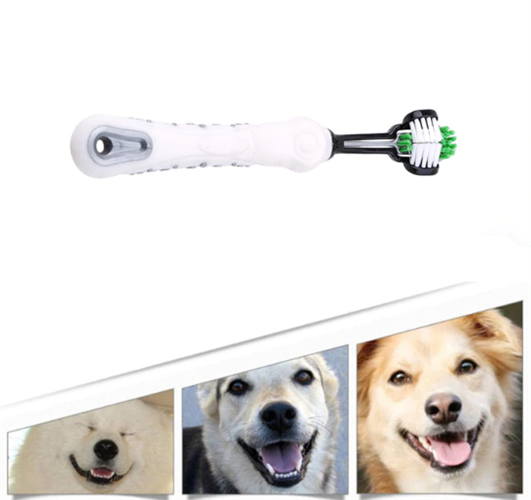 מברשת שיניים מקצועית לבעלי חיים