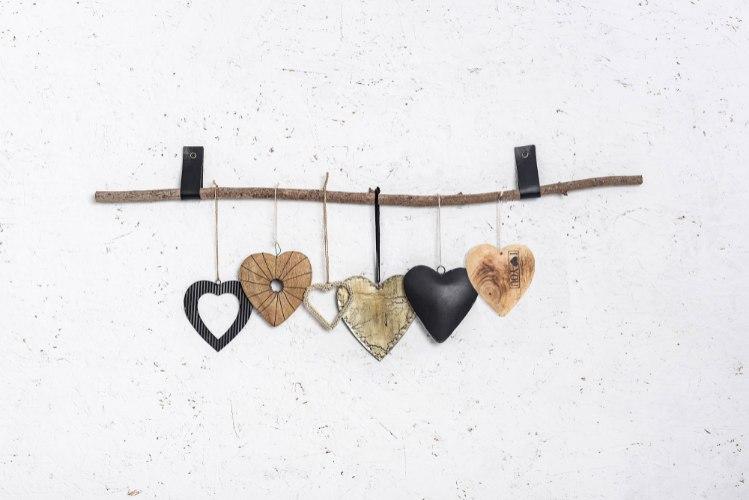 ענף 6  לבבות ורצועות עור
