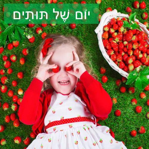 יום של תותים
