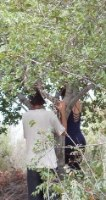 הטבע שלך - סדנה ייחודית ביער להעמקת הזוגיות