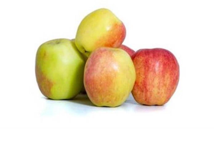 """תפוח ענה קטיף טרי 1.3 ק""""ג"""