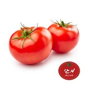 עגבנית מגי מארז