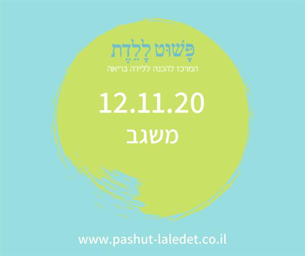 קורס הכנה ללידה 12.11.20 משגב-גן הקיימות מיקה קובל