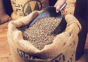 קפה ירוק נטול קפאין - Decaf Arabica Extra coffee