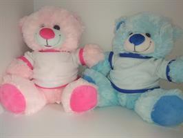 דובי בצבעים שונים לבחירה עם תמונה שלכם