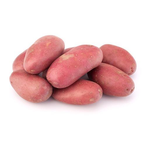 תפוח אדמה אדום אורגני - 1 קג
