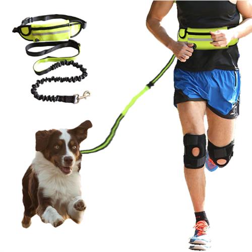 רצועת כלבים ללא ידיים