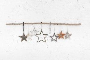 ענף עם 8 כוכבים