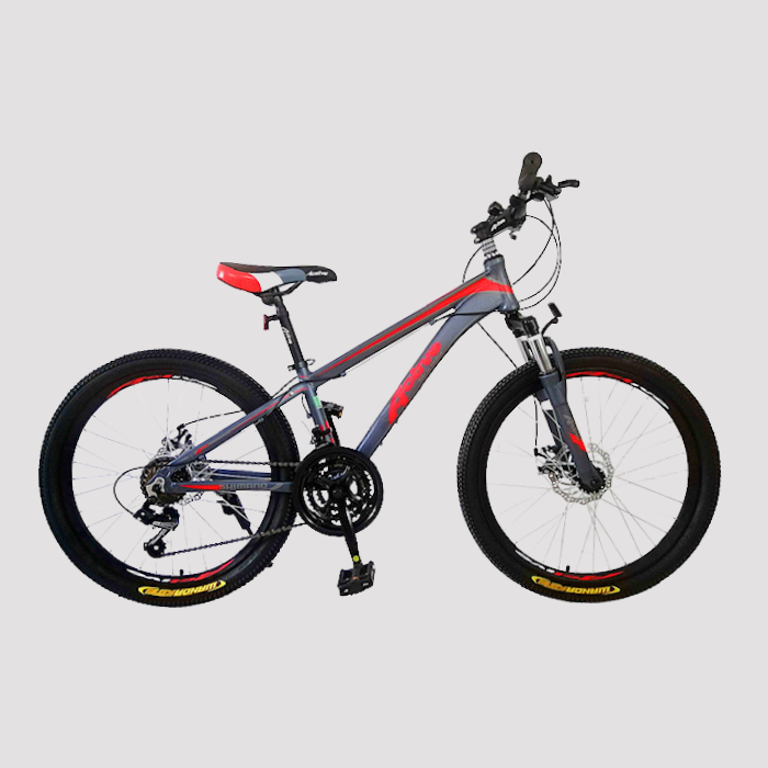 אופני הרים זנב קשיח אלומיניום Active