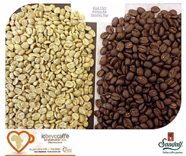 קפה ירוק קניה - Kenya AA Top Quality