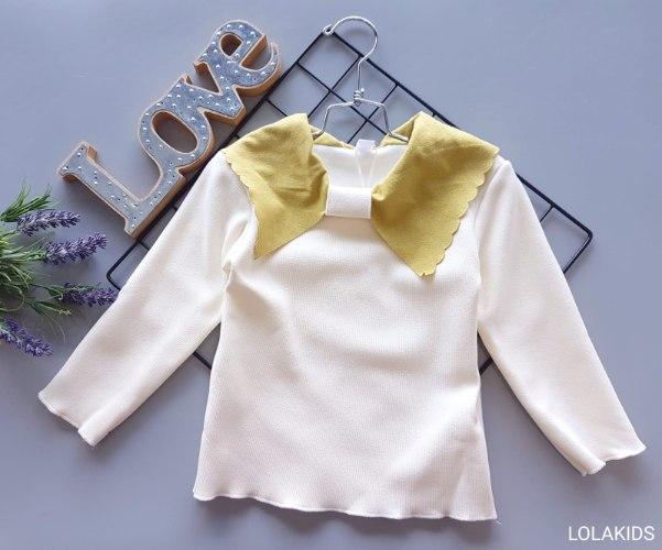 חולצה דגם 00301 (קטיפה מבפנים)