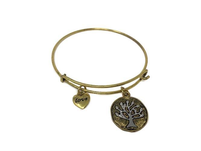צמיד - מטבע עתיק