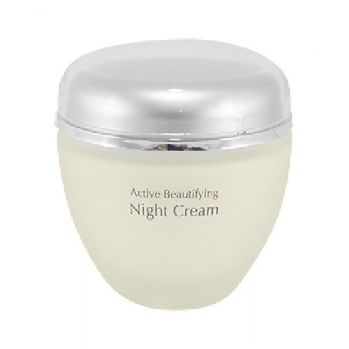 Anna Lotan New Age Control Active Beautifying Night Cream - אנה לוטן קרם יופי ללילה אקטיבי