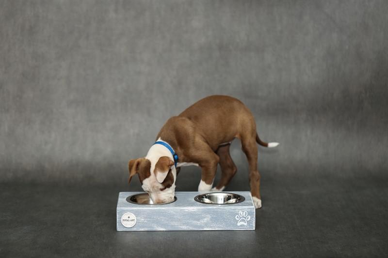 כלי אוכל ושתיה - ג'קסון S אפור בטון
