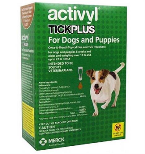 """אקטיוויל אמפולות מתקדמות לכלבים 10-5 ק""""ג"""