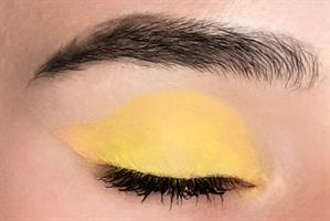צללית צהובה Sun