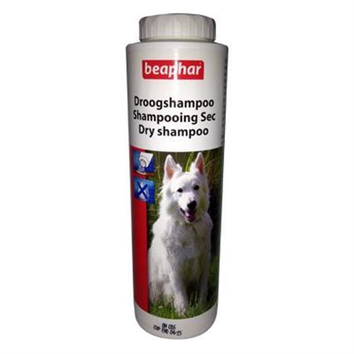 שמפו יבש איכותי לכלב