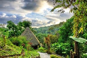 גואטמלה וקוסטה ריקה, טבע ותרבויות עתיקות 17 יום