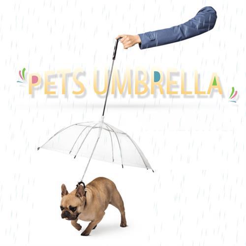 מטרייה לחיית המחמד שלך