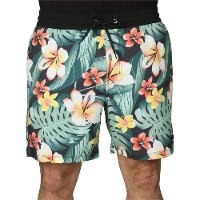 HURLEY PHTM CABANA VOLLEY 17'