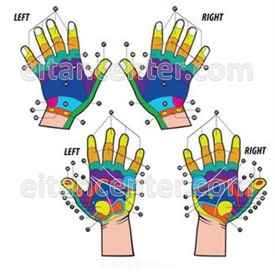 קורס אבחון רפלקסולוגי בכפות הידיים - דיגיטלי