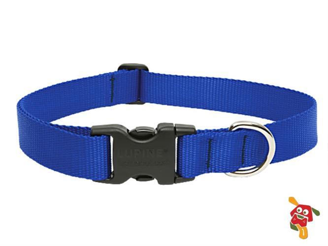 """קולר לכלב - כחול מידה S (מתאים עד 9 ק""""ג)"""