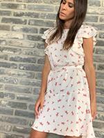 שמלת הושי