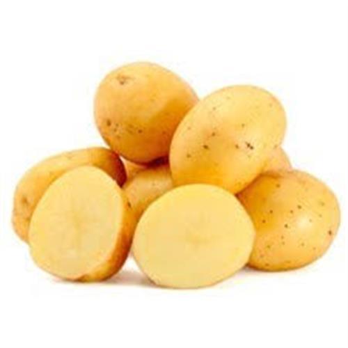 תפוח אדמה לבן בתפזורת