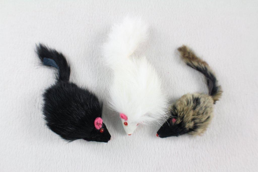 """תוף 60 יח עכבר פרוותי 2.5"""""""