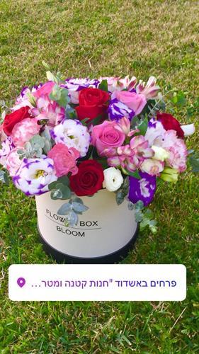 קופסת ליזיאנטוס בשילוב של ורדים-מקט 014