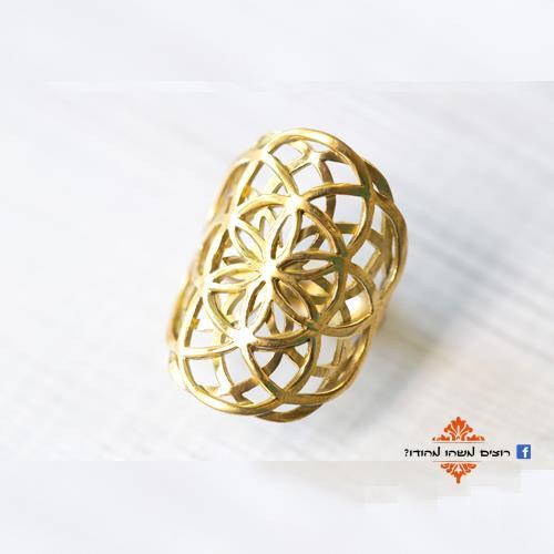 טבעת זרע החיים כפול