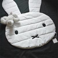 שטיחון ארנבון
