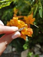 טבעת יהלומים 0.48 קראט בזהב 14 קרט