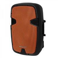 """רמקול נייד מוגבר 12"""" עם בלוטוס ושני מיקרופונים אלחוטיים תוצרת Pure Acoustics דגם PMW2012"""