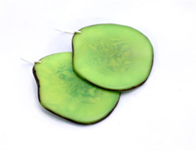 עגילי פרוסה