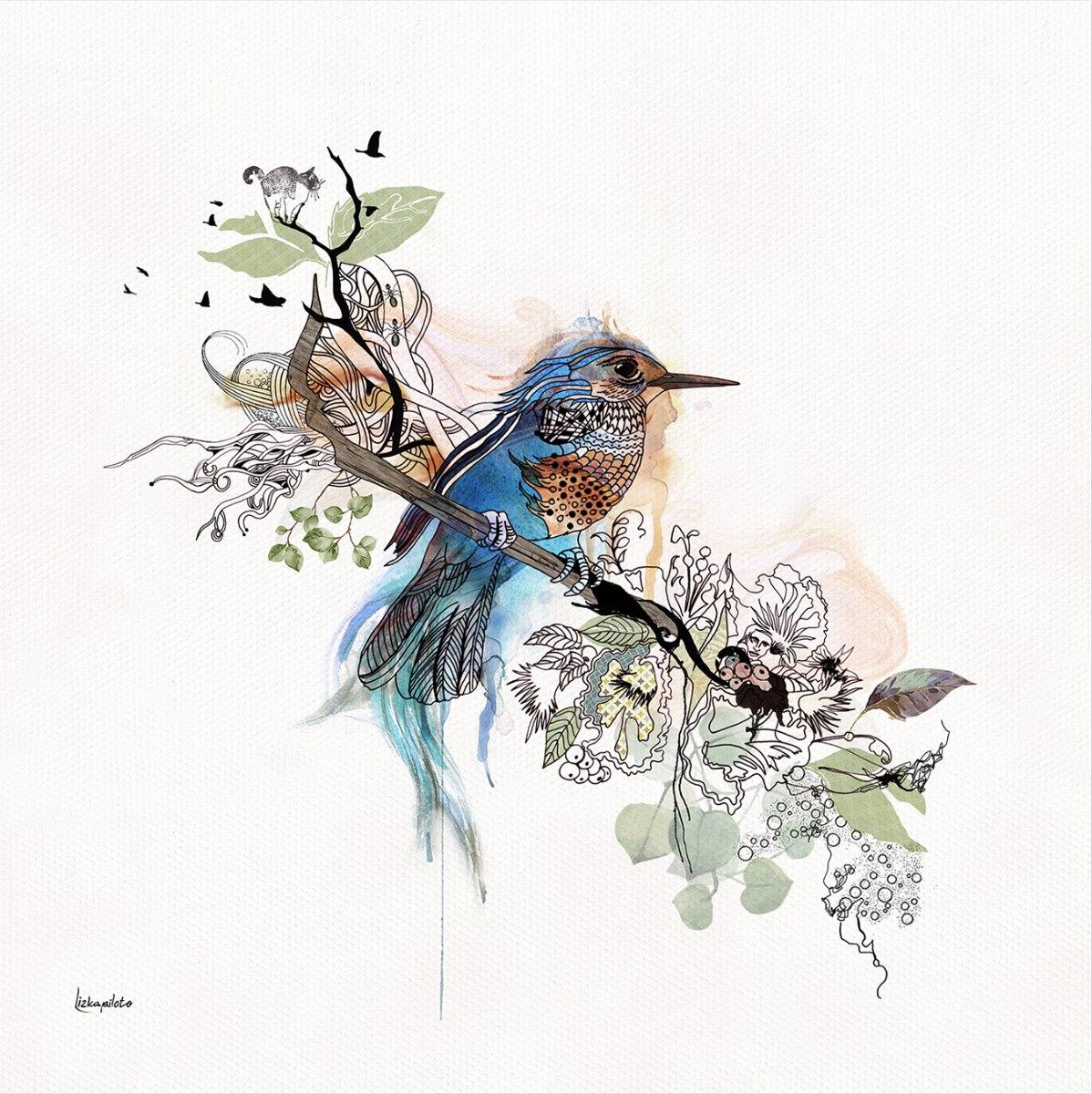 ציור של שלדג כחול ליז קפילוטו