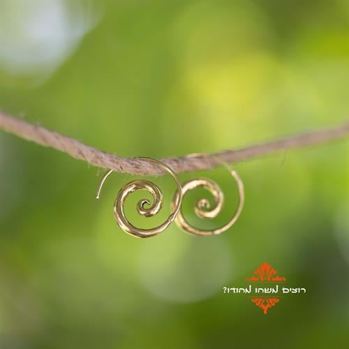 עגילי טייני spiral בראס