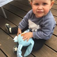 בובת התפתחות, בובת תינוק: אהוד התינוק החמוד