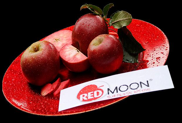 תפוח Red Moon מארז