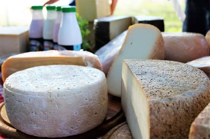 גבינות
