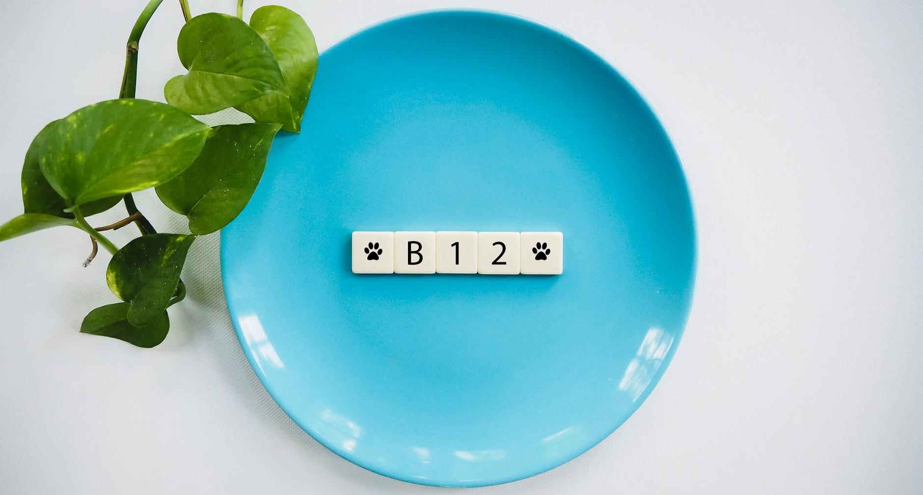 צמחונים או טבעוניים? איך מתמודדים עם חוסר ב- B12?