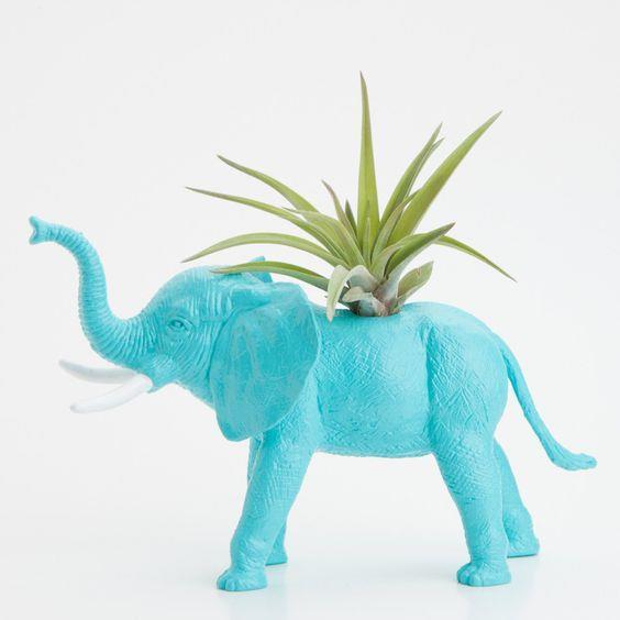 צמחים למשרד