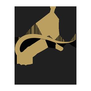 אניטה ארבע מכירת תמונות על קנבס, ציורים והדפס על קנבס